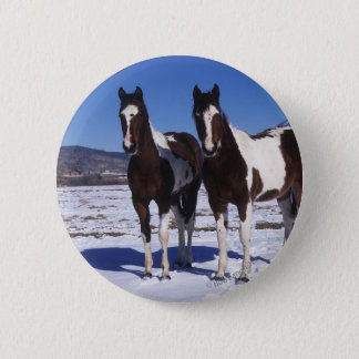 Paint Horses Standing in the Snow Pinback Button