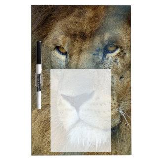 Paint Lion (lion) Dry Erase Board