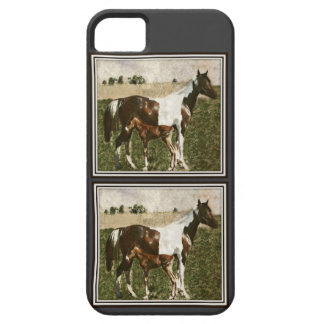Paint Mare and Foal iPhone 5 Case