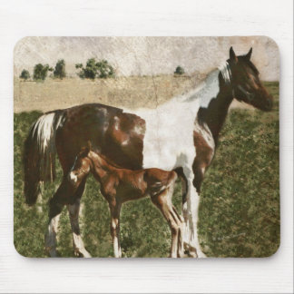 Paint Mare and Foal Mouse Pad
