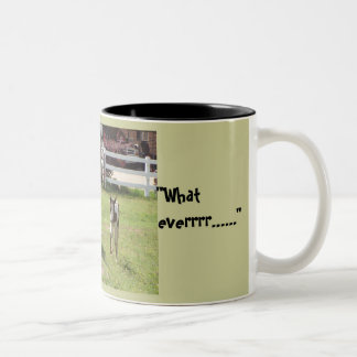 Paint mare and Foal Coffee Mug