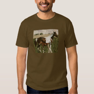 Paint Mare and Foal T Shirt