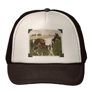 Paint Mare and Foal Trucker Hats