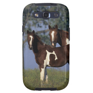 Paint Mare & Foal Galaxy SIII Covers