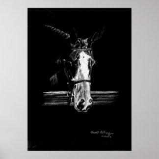 Paint On Black Horse Portrait Poster