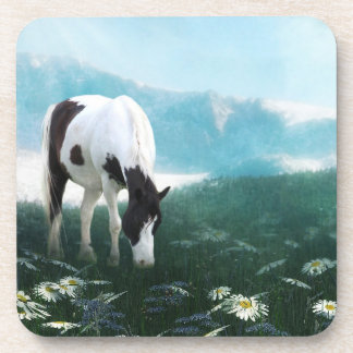 Paint or pinto horse beverage coaster