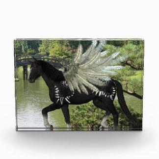 Paint Pegasus Award