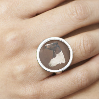 Paint Pinto Horse on Leather-effect Riding Ring