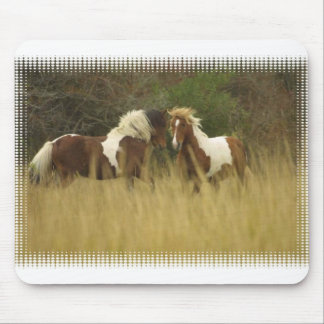 Paint Ponies in Field Mouse Pad