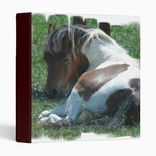 Paint Pony Binder