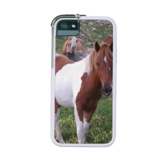 Paint Pony Cover For iPhone 5/5S