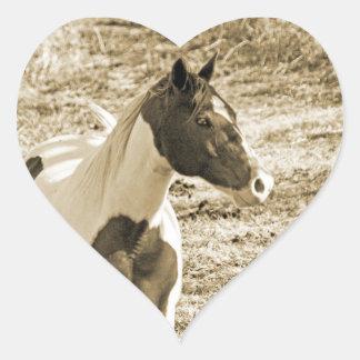 Paint Pony Heart Sticker