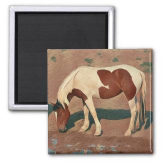 Paint Pony Magnet