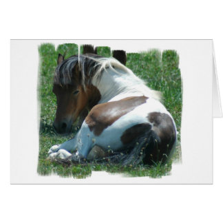 Paint Pony Resting Card