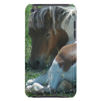 Paint Pony Resting iTouch Case Barely There iPod Cases
