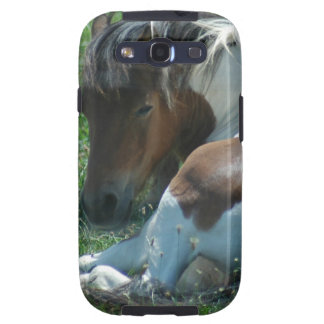 Paint Pony Resting Samsung Galaxy Case Galaxy S3 Case