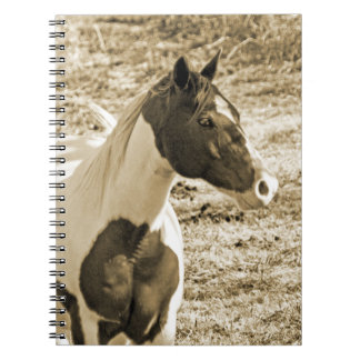 Paint Pony Spiral Notebook