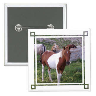 Paint Pony Square Pin