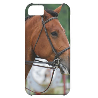 Paint Show Horse Cover For iPhone 5C