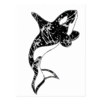 Paint Splatter Orca Art Postcard