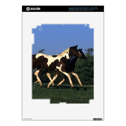 Paint Yearlings Running Skin For iPad 3