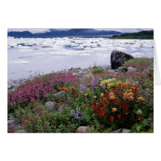 Paintbrush, Lupine, Fireweed. Icebergs Russell Card