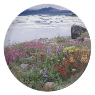 Paintbrush, Lupine, Fireweed. Icebergs Russell Party Plate