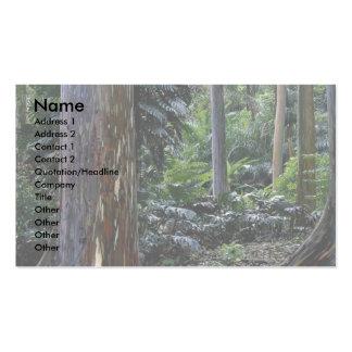 Painted bark eucalyptus, Maui, Hawaii Business Card