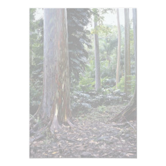 Painted bark eucalyptus, Maui, Hawaii 5x7 Paper Invitation Card