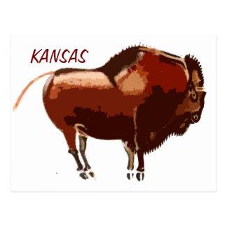painted bison Kansas postcard