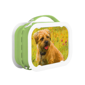 Painted Border Terrier Print, Green yubo Lunch Box