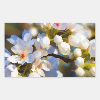 Painted Bradford Calleryana Pear Tree Blossoms Rectangular Sticker