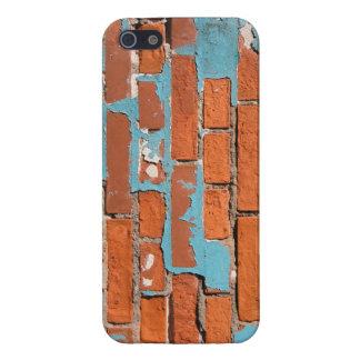 Painted Brick iPhone Case