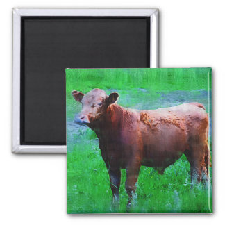 Painted Brown Cow 2 Inch Square Magnet