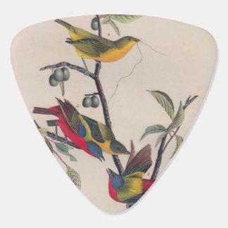 Painted Bunting Audubon Prints Guitar Pick