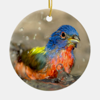 Painted Bunting - Beautiful Birds Ornament