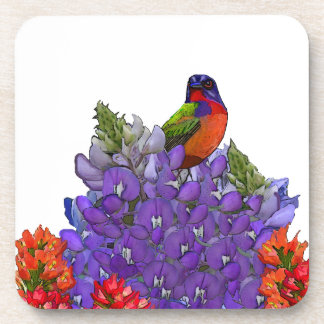 Painted Bunting on Bluebonnets Beverage Coaster