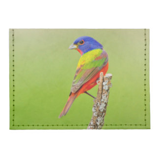 Painted Bunting (Passerina ciris) Male Perched Card Wallet
