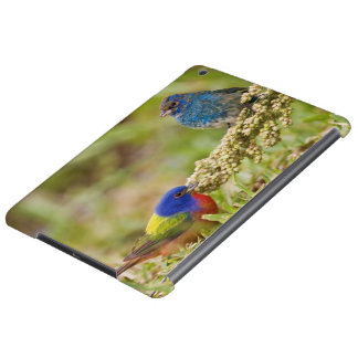 Painted Bunting Passerina citria) adult male 2 Cover For iPad Air