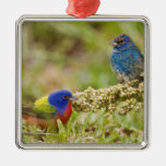 Painted Bunting Passerina citria) adult male 2 Christmas Tree Ornaments