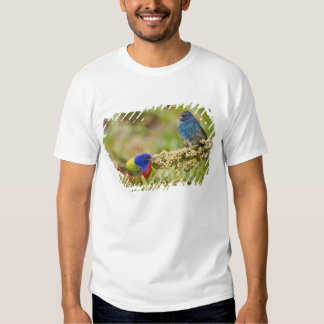 Painted Bunting Passerina citria) adult male 2 T Shirt