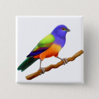 Painted Bunting Pin