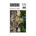 Painted Bunting Stamp