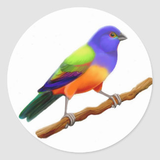 Painted Bunting Sticker