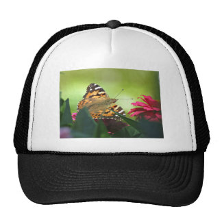 Painted Butterfly and Zinnias Mesh Hats