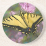 Painted Butterfly Coaster