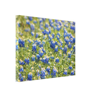 Painted Canvas: Texas Wildflower Bluebonnet Field Gallery Wrap Canvas
