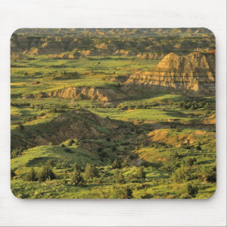 Painted Canyon After Storm in Theodore Roosevelt Mouse Pad