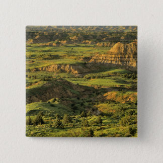 Painted Canyon After Storm in Theodore Roosevelt Pinback Button