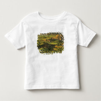 Painted Canyon After Storm in Theodore Roosevelt Toddler T-shirt